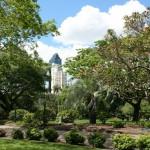 Brisbane City Botanic Gardens - Photo Credit Philip Bouchard
